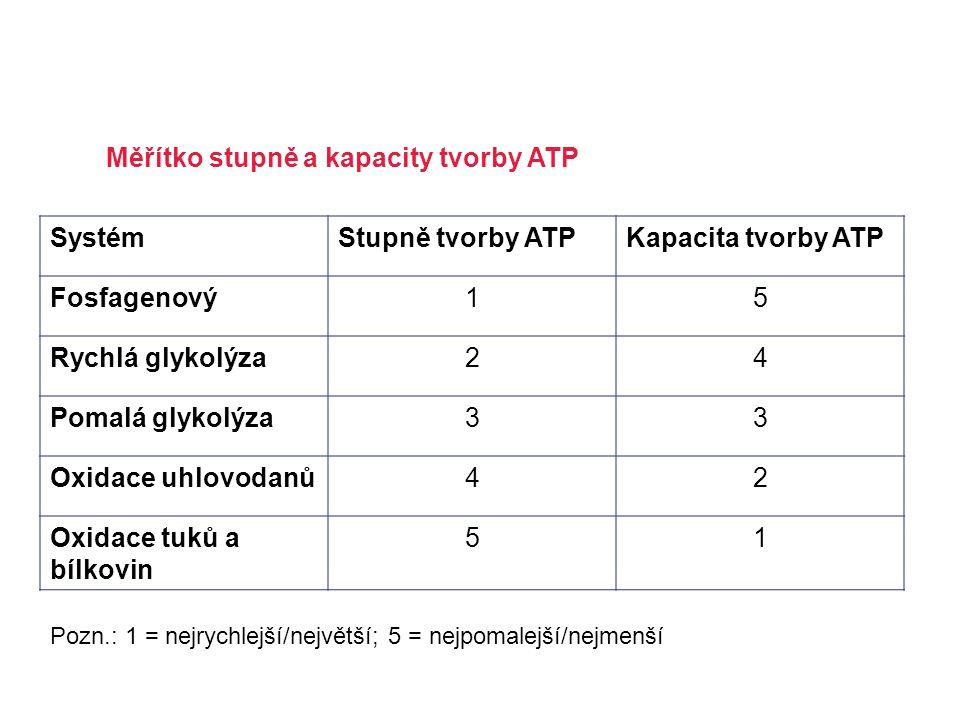 Měřítko stupně a kapacity tvorby ATP Systém Stupně tvorby ATP