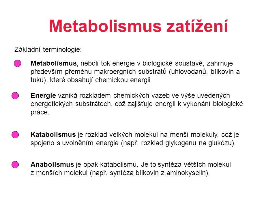 Metabolismus zatížení
