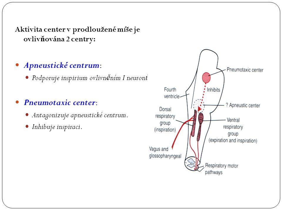 Apneustické centrum: Pneumotaxic center: