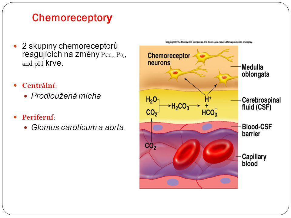 Chemoreceptory Insert fig. 16.27