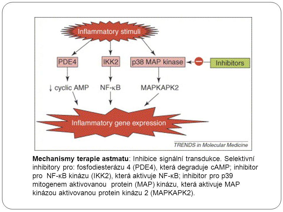 Mechanismy terapie astmatu: Inhibice signální transdukce