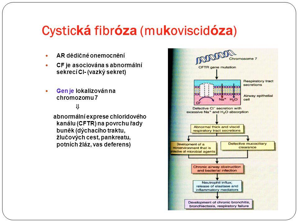 Cystická fibróza (mukoviscidóza)