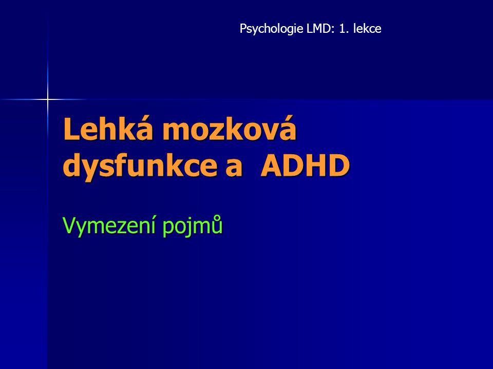 Lehká mozková dysfunkce a ADHD
