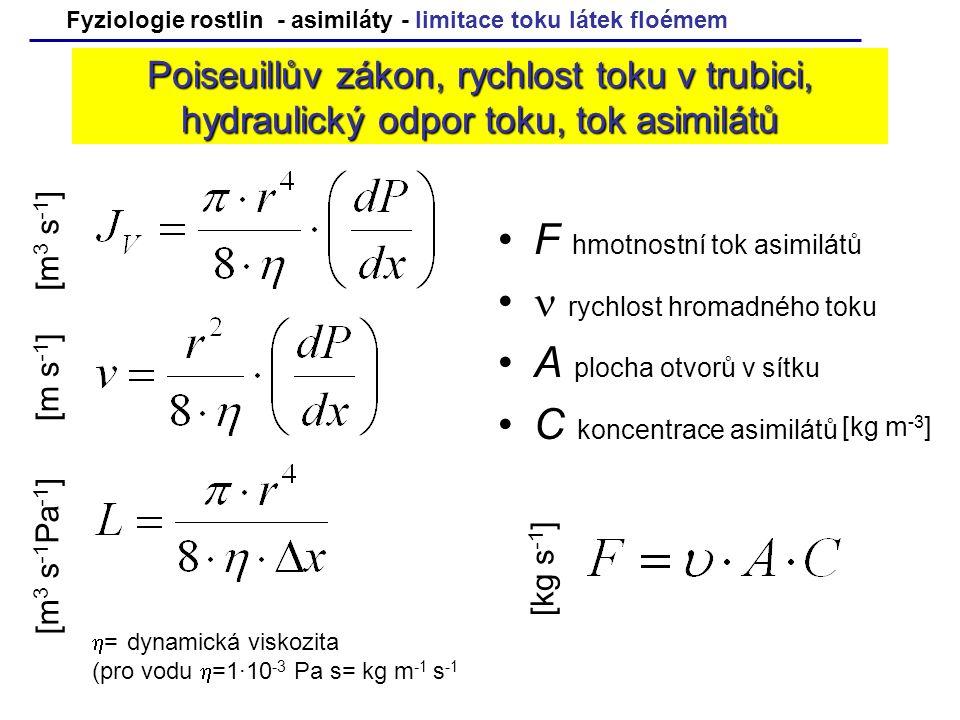 F hmotnostní tok asimilátů  rychlost hromadného toku