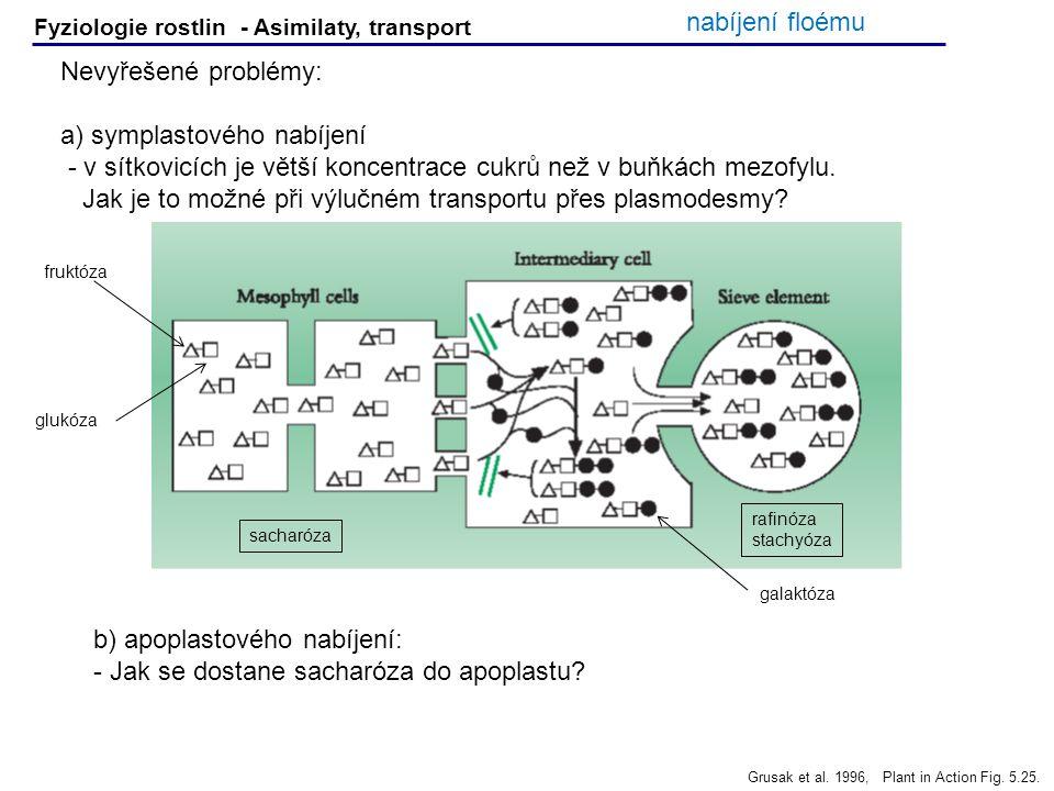 a) symplastového nabíjení