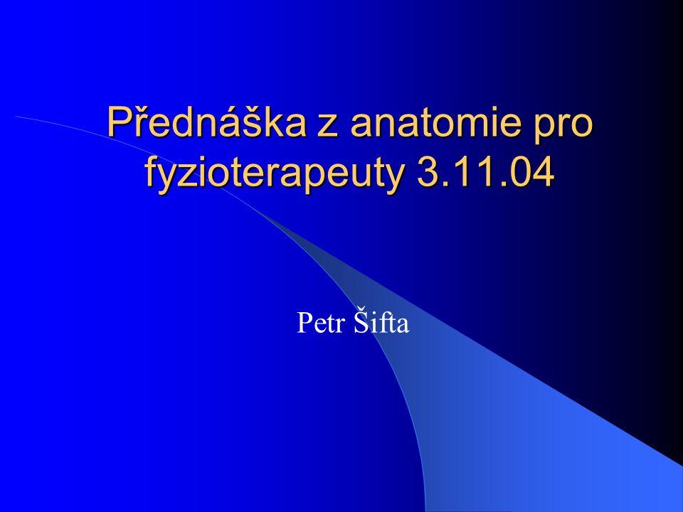 Přednáška z anatomie pro fyzioterapeuty 3.11.04