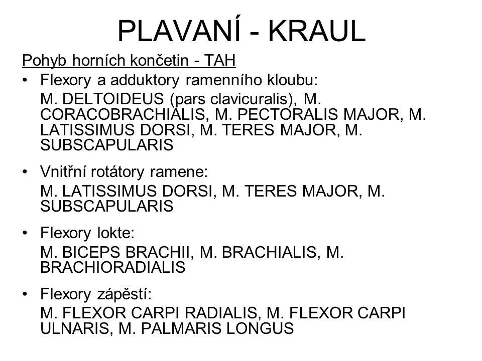 PLAVANÍ - KRAUL Pohyb horních končetin - TAH