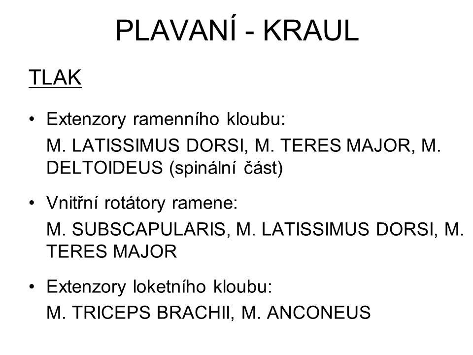 PLAVANÍ - KRAUL TLAK Extenzory ramenního kloubu: