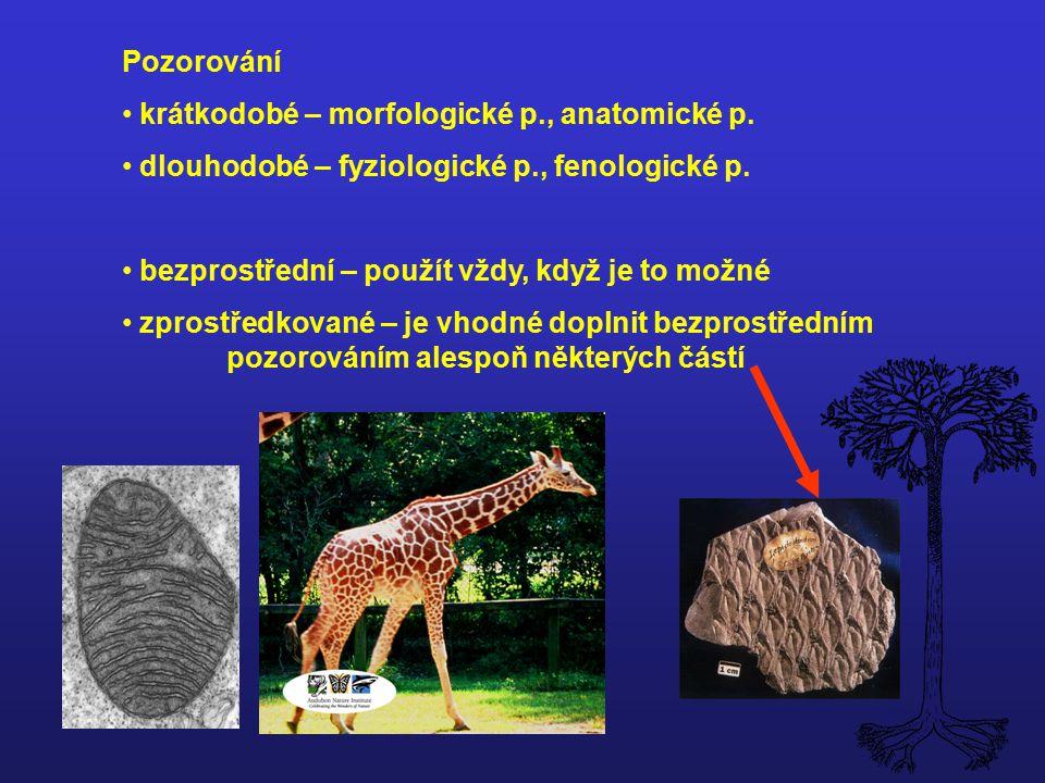 Pozorování krátkodobé – morfologické p., anatomické p. dlouhodobé – fyziologické p., fenologické p.