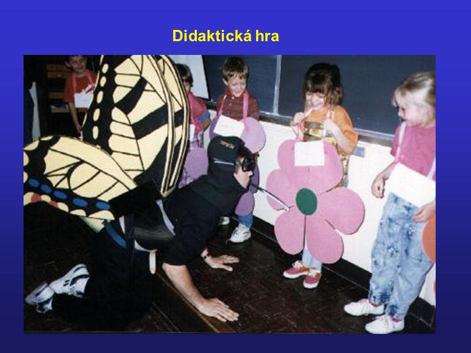 Didaktická hra