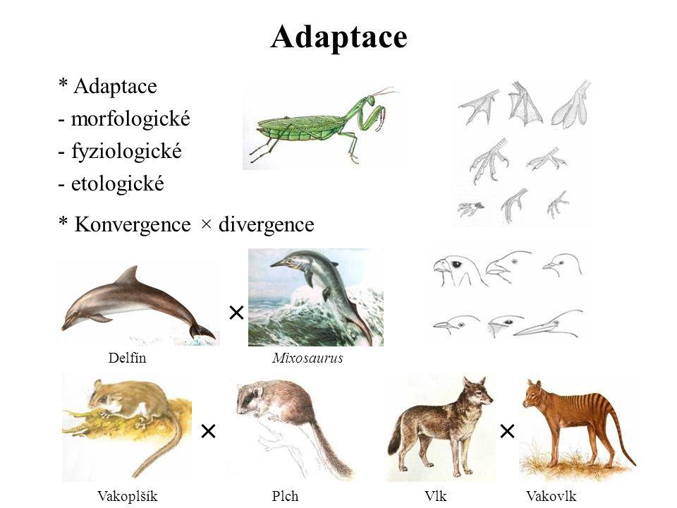 Adaptace × × × Adaptace - morfologické - fyziologické - etologické