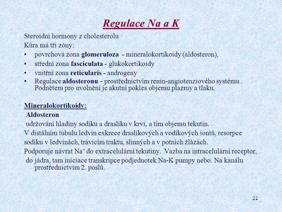 Regulace Na a K Steroidní hormony z cholesterolu Kůra má tři zóny: