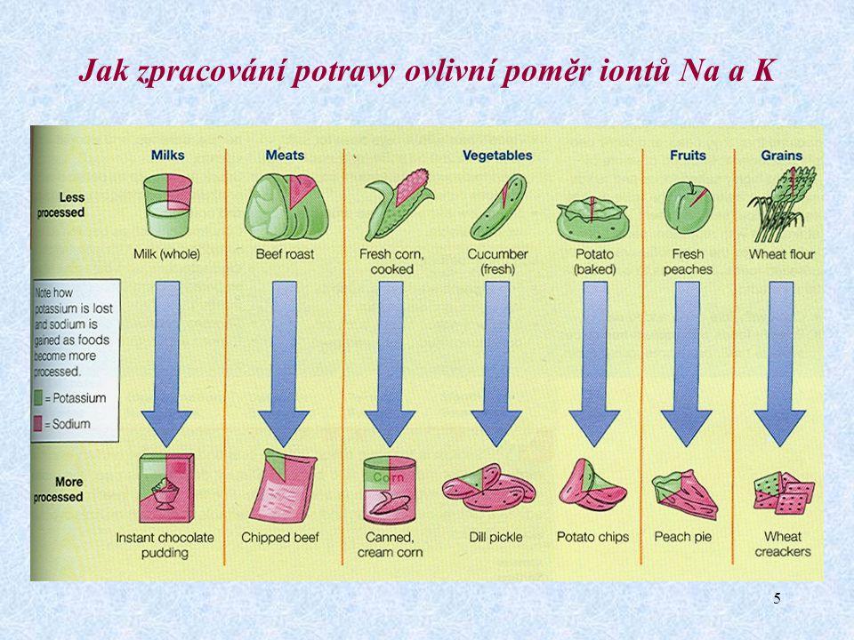 Jak zpracování potravy ovlivní poměr iontů Na a K