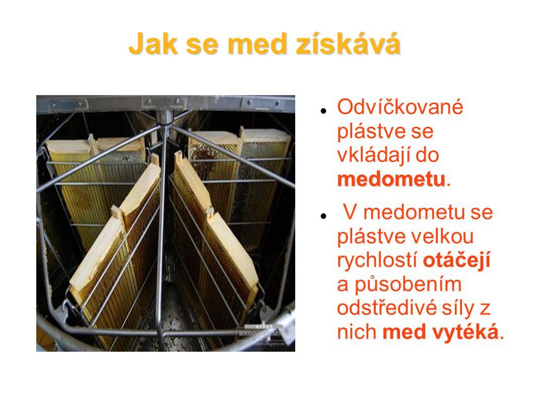 Jak se med získává Odvíčkované plástve se vkládají do medometu.