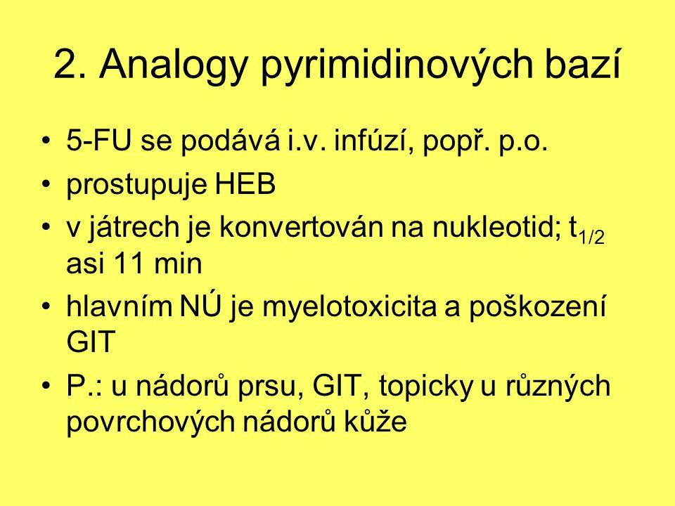 2. Analogy pyrimidinových bazí