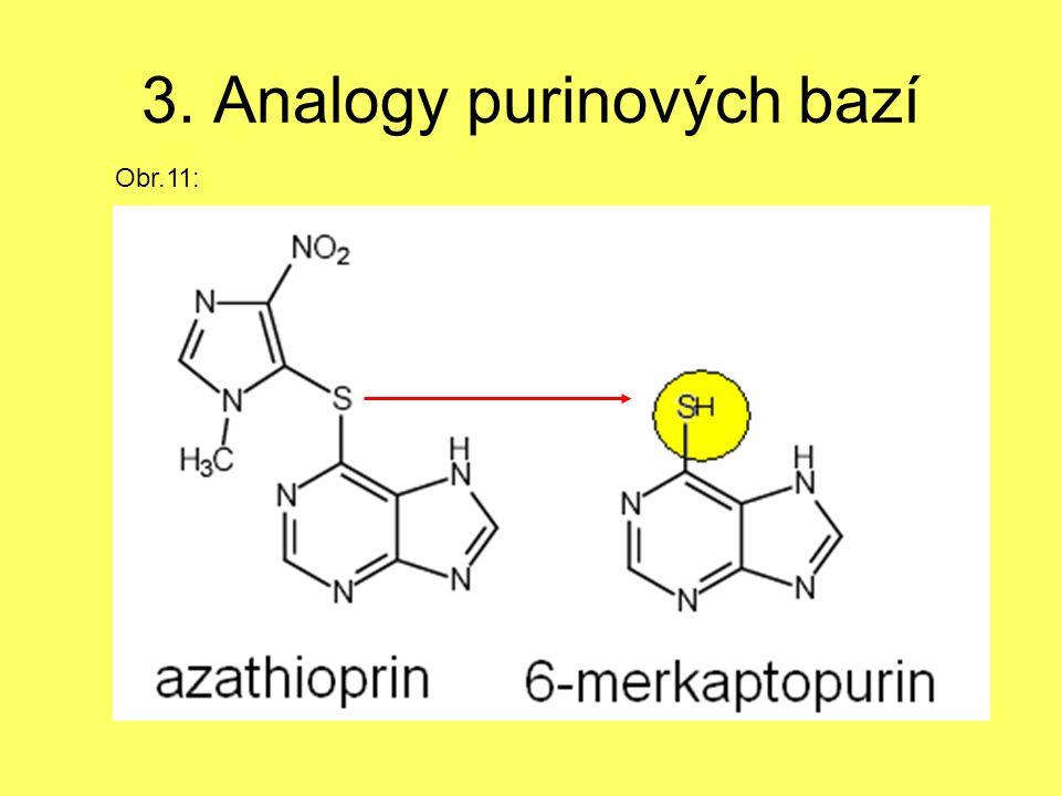 3. Analogy purinových bazí