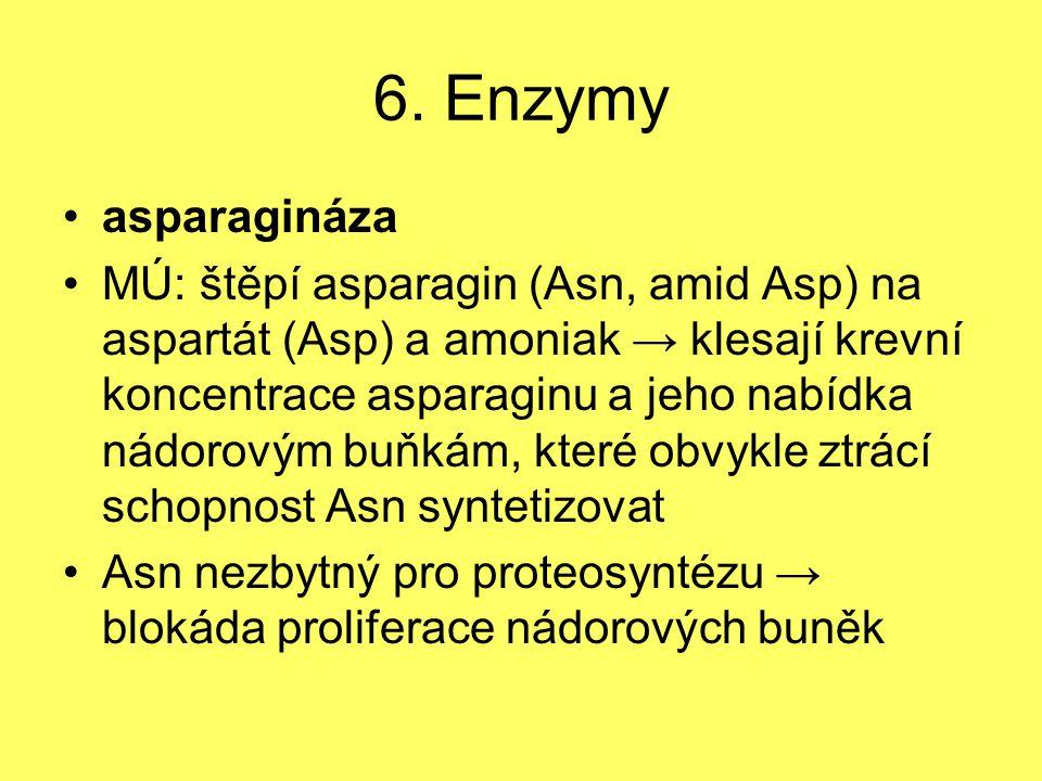 6. Enzymy asparagináza.