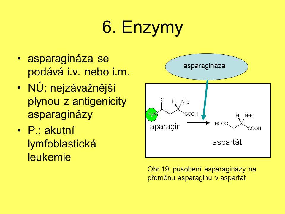 6. Enzymy asparagináza se podává i.v. nebo i.m.