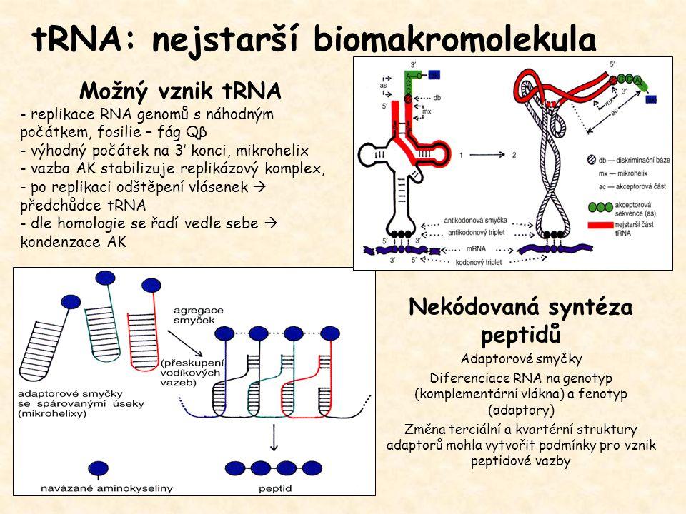 Nekódovaná syntéza peptidů
