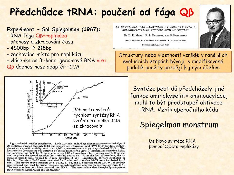 Předchůdce tRNA: poučení od fága Qβ