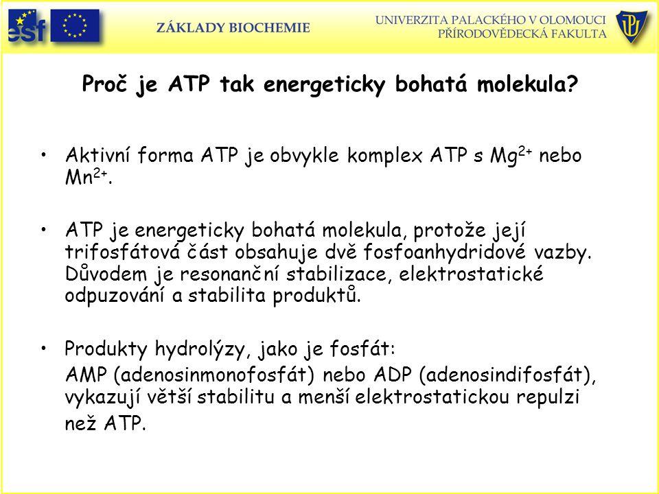 Proč je ATP tak energeticky bohatá molekula