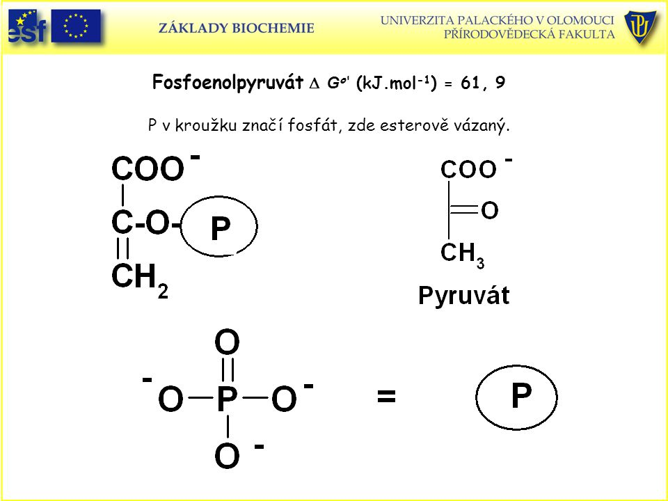 Fosfoenolpyruvát D Go (kJ