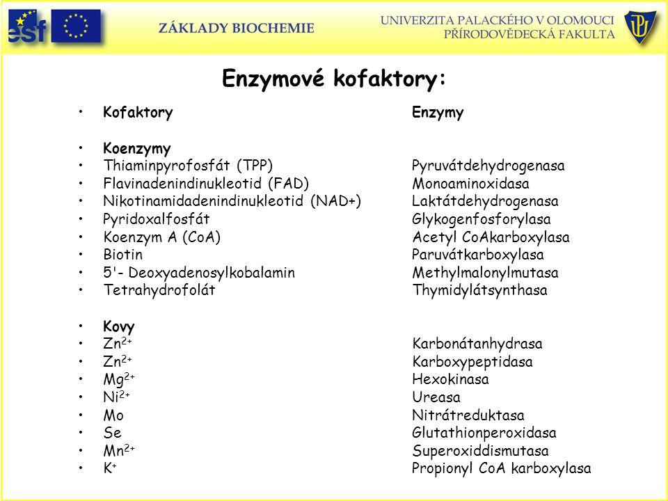 Enzymové kofaktory: Kofaktory Enzymy Koenzymy