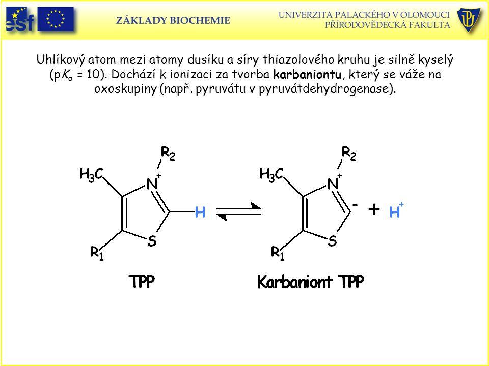 Uhlíkový atom mezi atomy dusíku a síry thiazolového kruhu je silně kyselý (pKa = 10).
