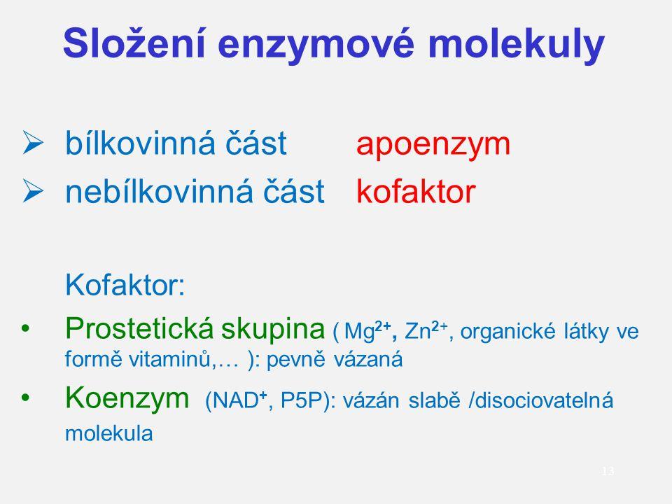 Složení enzymové molekuly