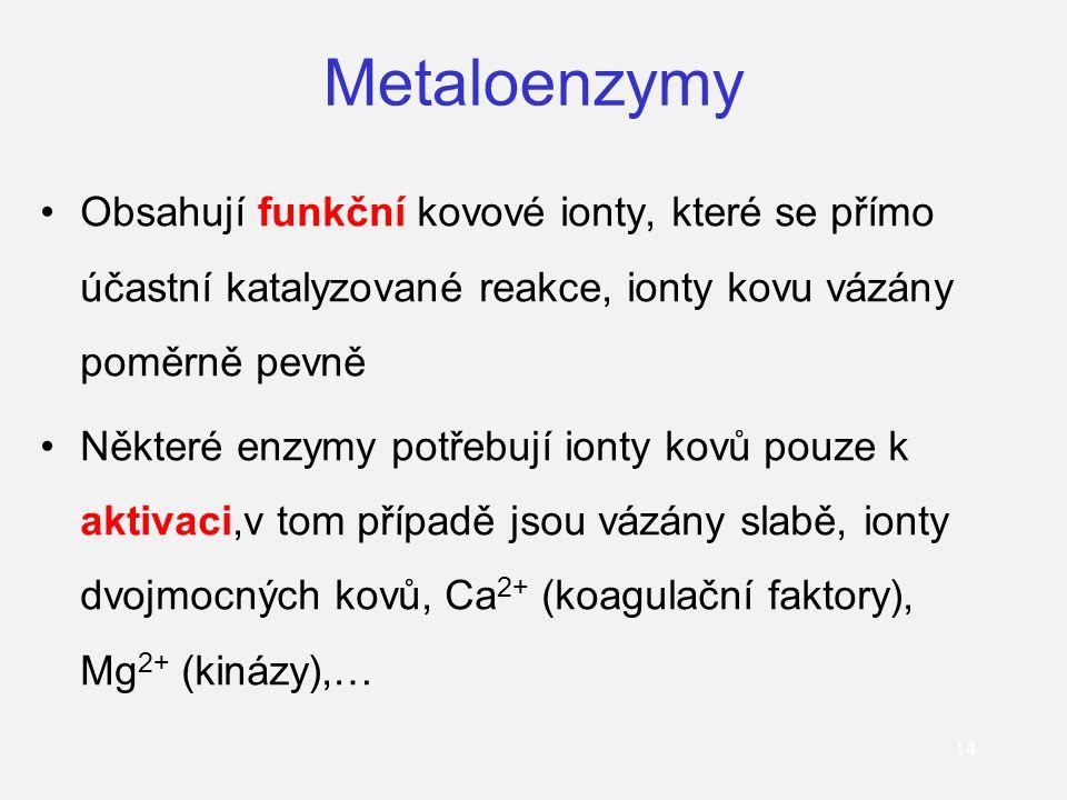 Metaloenzymy Obsahují funkční kovové ionty, které se přímo účastní katalyzované reakce, ionty kovu vázány poměrně pevně.