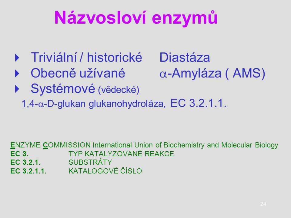 Názvosloví enzymů  Triviální / historické Diastáza