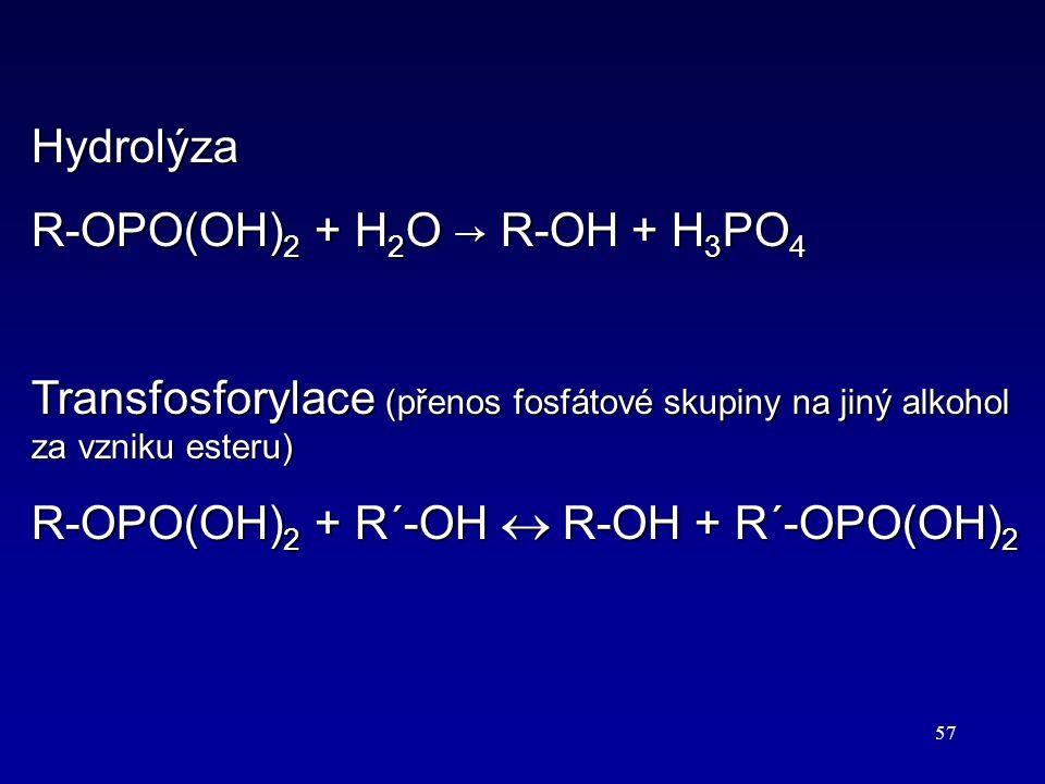 Hydrolýza R-OPO(OH)2 + H2O → R-OH + H3PO4. Transfosforylace (přenos fosfátové skupiny na jiný alkohol za vzniku esteru)