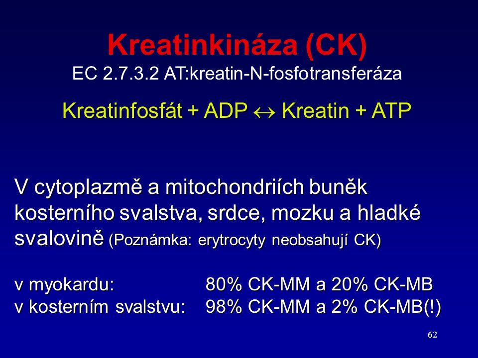 Kreatinkináza (CK) Kreatinfosfát + ADP  Kreatin + ATP