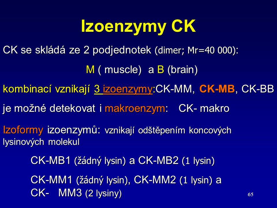 Izoenzymy CK CK se skládá ze 2 podjednotek (dimer; Mr=40 000):