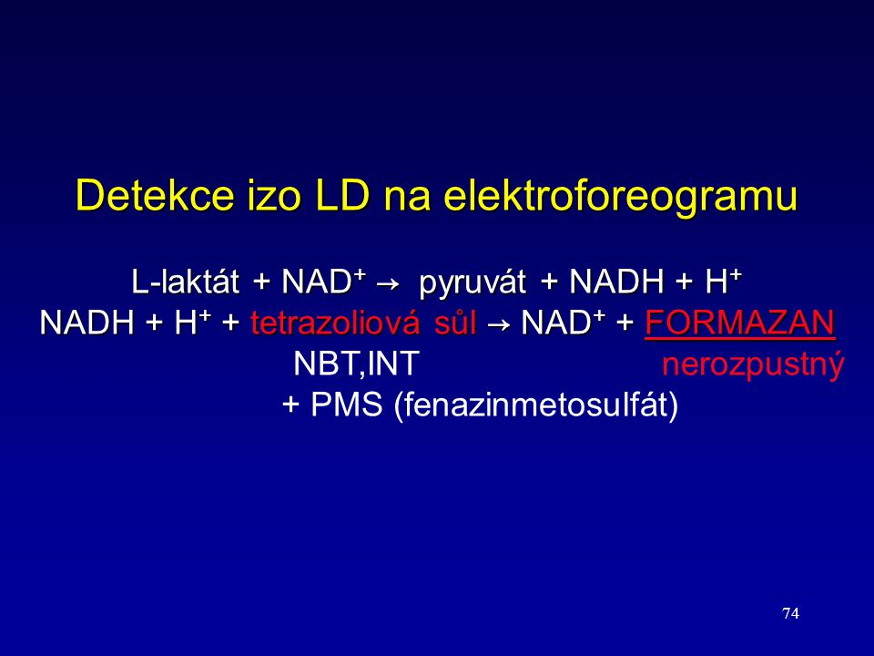 Detekce izo LD na elektroforeogramu