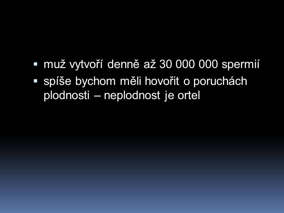 muž vytvoří denně až 30 000 000 spermií