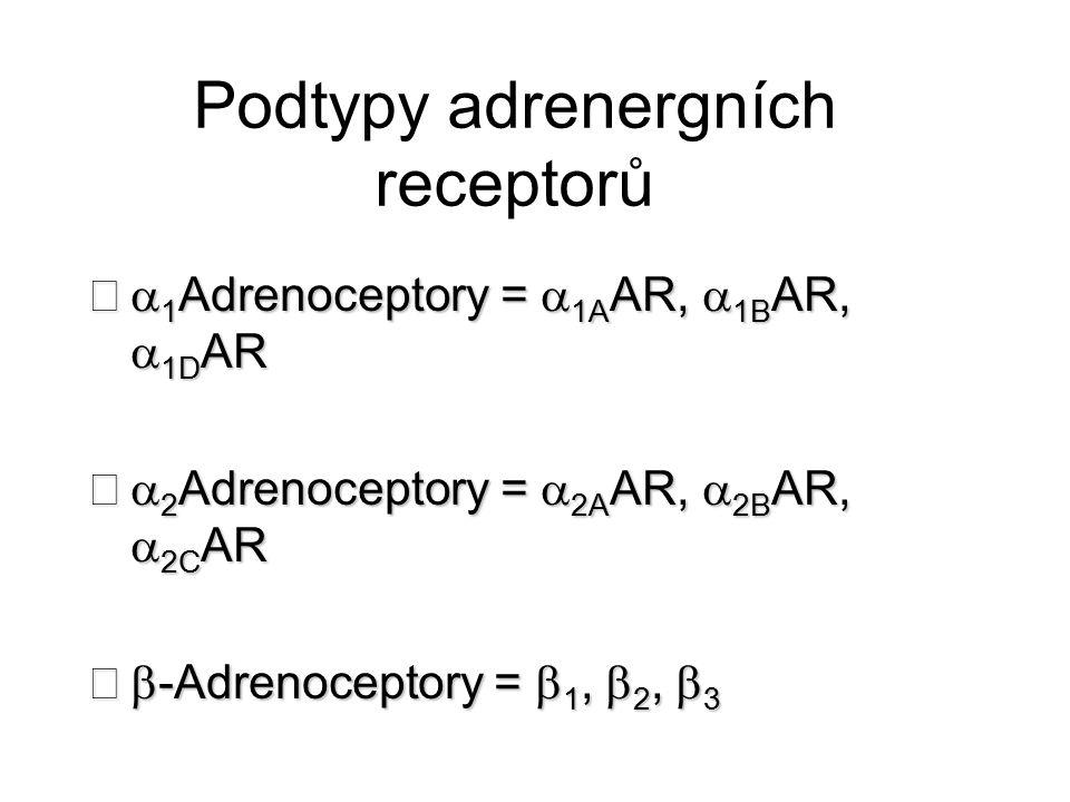 Podtypy adrenergních receptorů