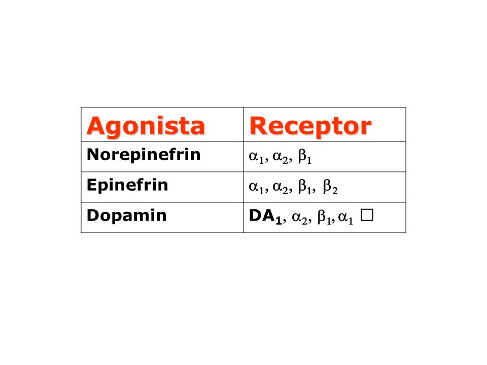 Agonista Receptor Norepinefrin 1, 1 Epinefrin 1, 1 2