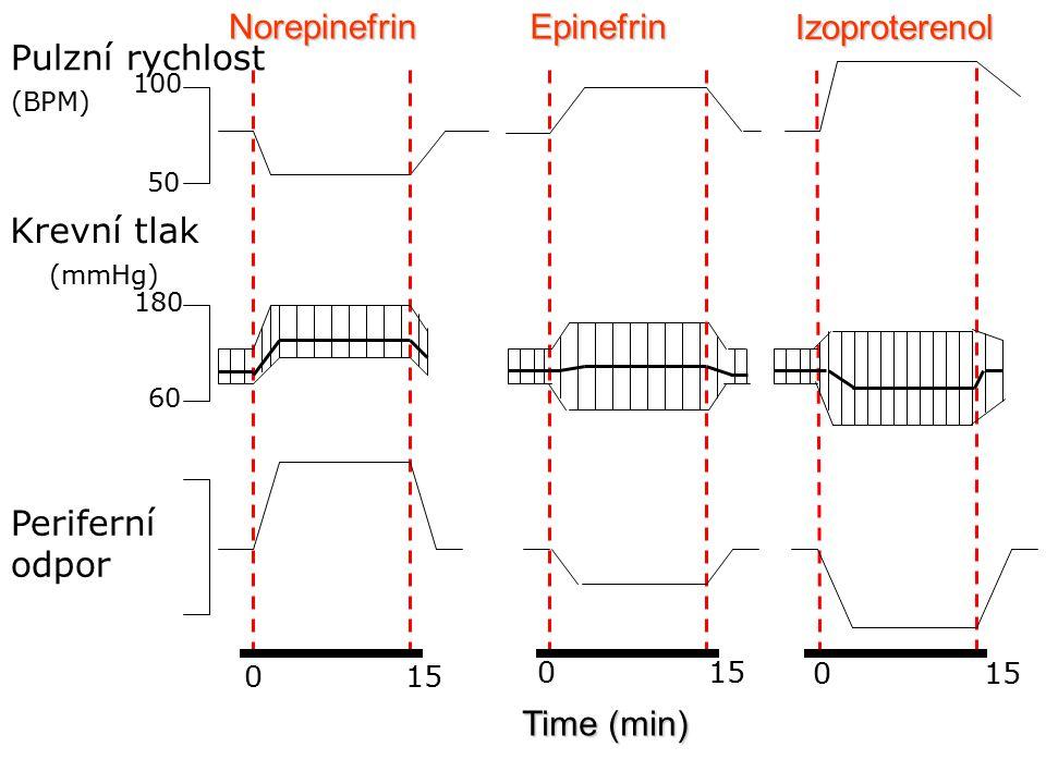 Norepinefrin Epinefrin Izoproterenol Pulzní rychlost Krevní tlak