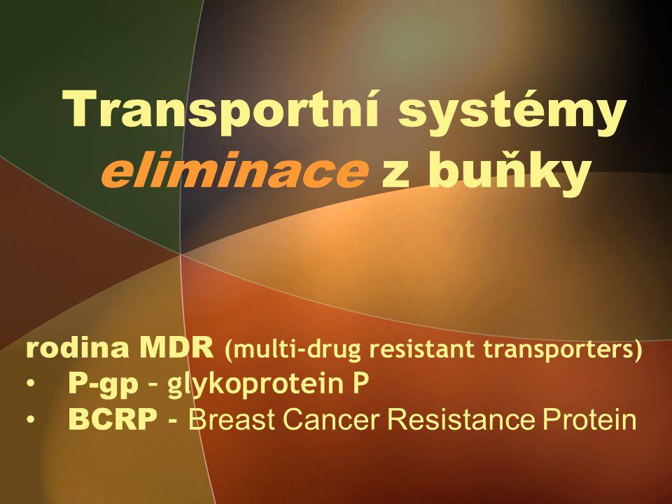 Transportní systémy eliminace z buňky