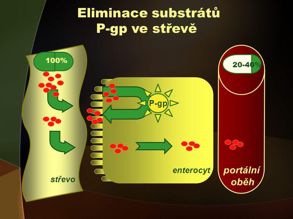 Eliminace substrátů P-gp ve střevě