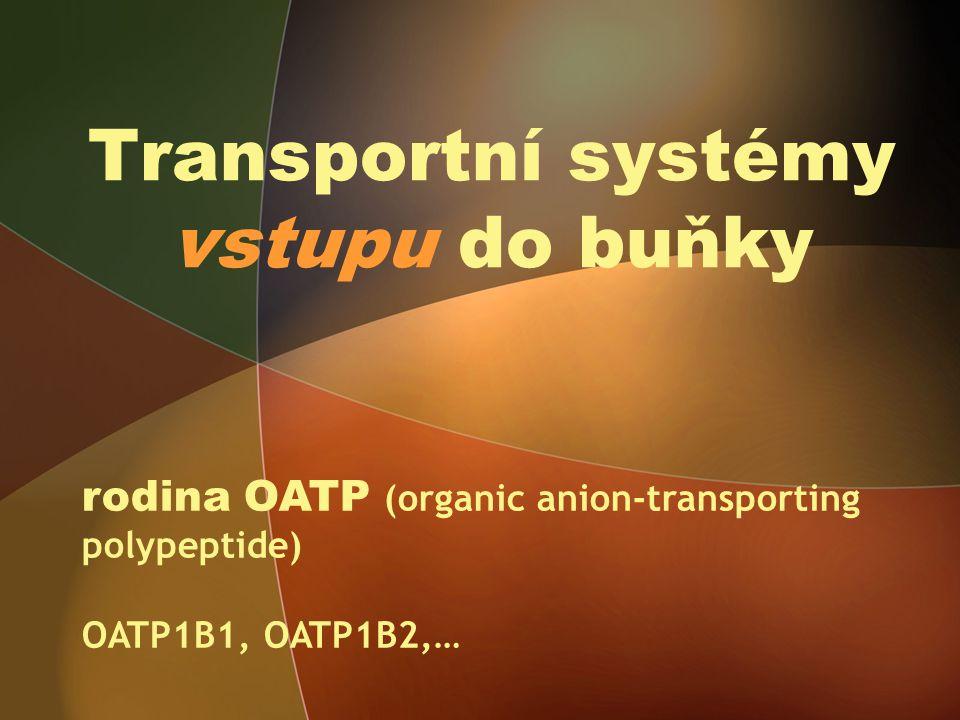 Transportní systémy vstupu do buňky