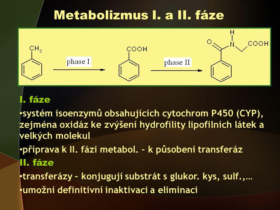 Metabolizmus I. a II. fáze
