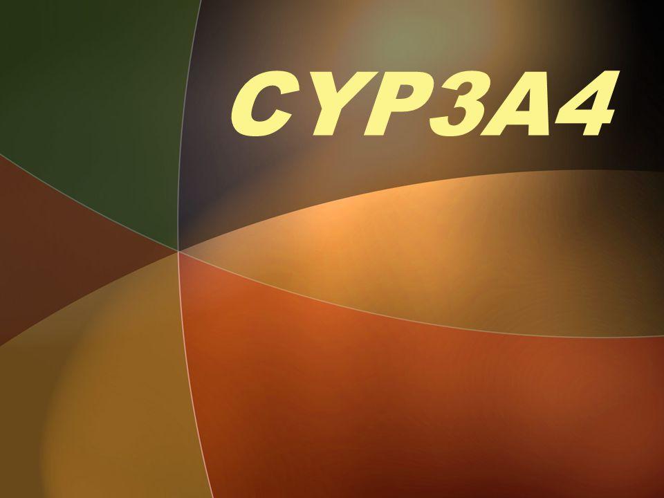 CYP3A4