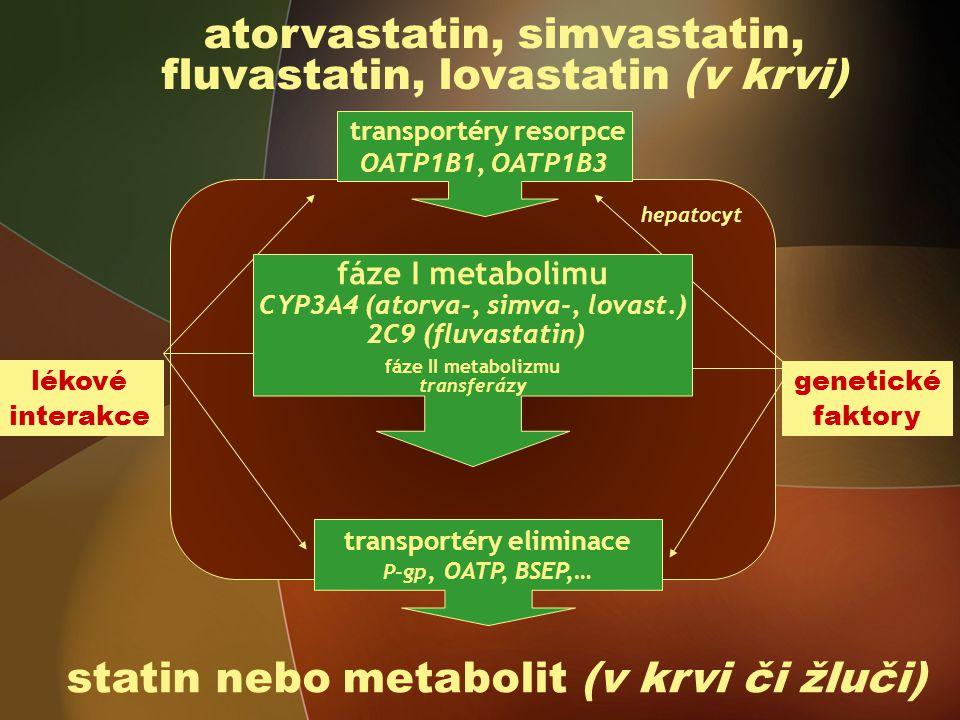atorvastatin, simvastatin, fluvastatin, lovastatin (v krvi)