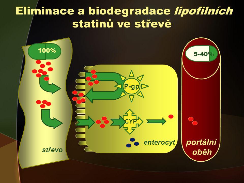 Eliminace a biodegradace lipofilních statinů ve střevě