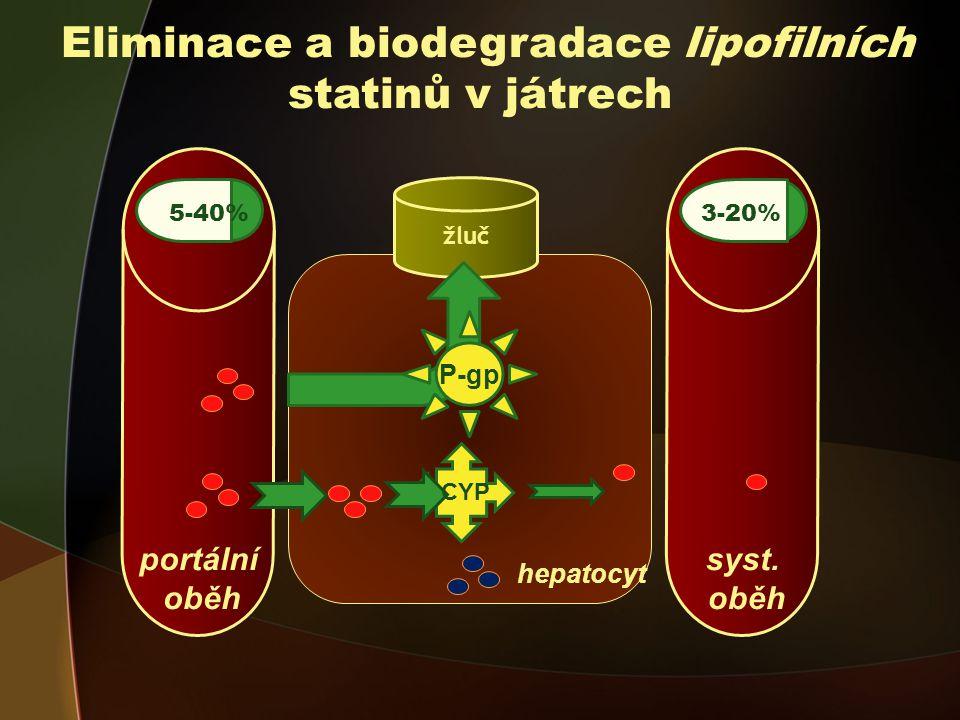 Eliminace a biodegradace lipofilních statinů v játrech