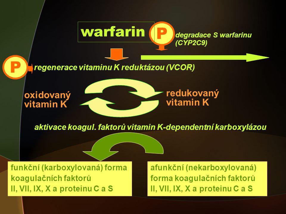 P P warfarin redukovaný oxidovaný vitamin K vitamin K