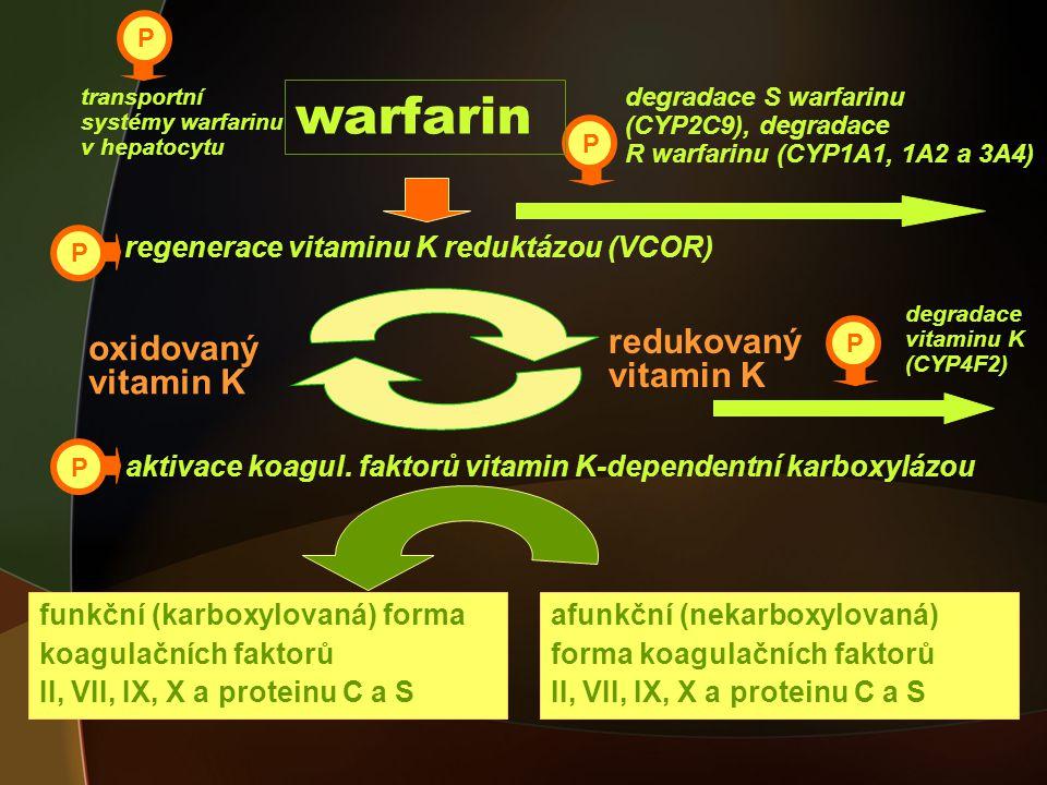 warfarin redukovaný oxidovaný vitamin K vitamin K