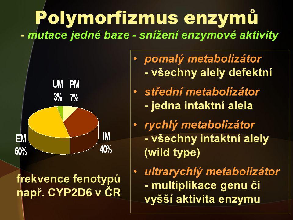 Polymorfizmus enzymů - mutace jedné baze - snížení enzymové aktivity